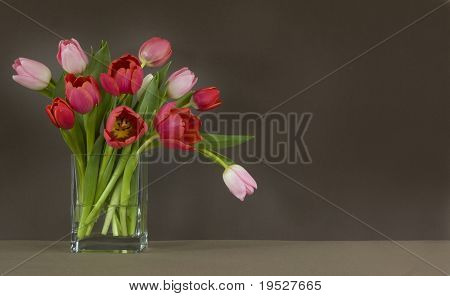 vase of red and pink tulips on table - dark brown background