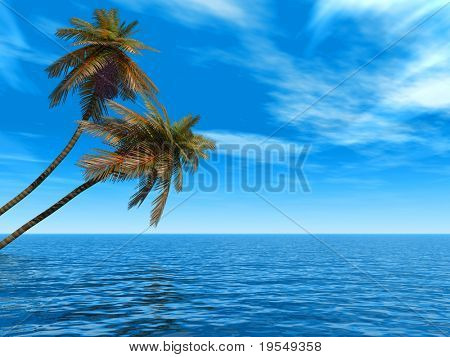 Coconut palm trees on a beach - 3d illustration.