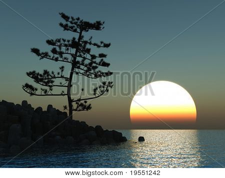 Pine tree at sea coast - 3d illustration.