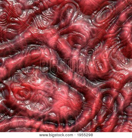 Dry Lizard Skin