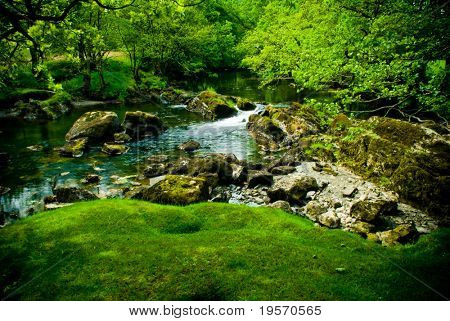 Amazing green, lush river scene