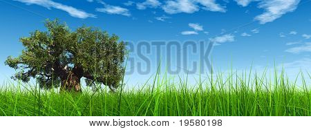 3d green grass over a blue sky banner  with white clouds as background and a clear horizon with a natural green but old baobab tree. Ideal for nature,green or sport designs.