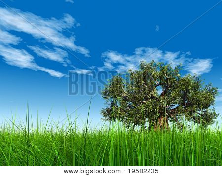 3d green grass over a blue sky with white clouds as background and a clear horizon with a natural green but old baobab tree. Ideal for nature,green or sport designs.