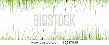 High resolution 3d green grass frame isolated on a white background