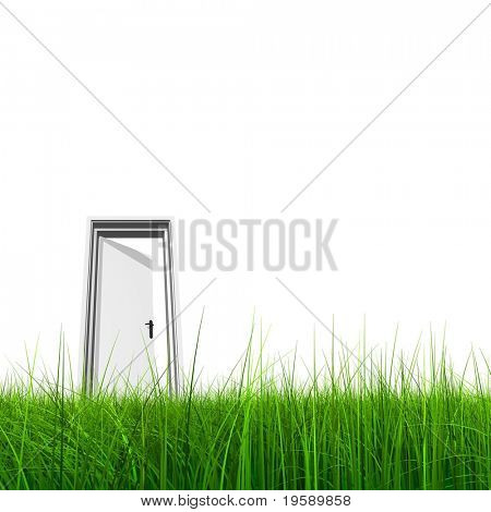 High resolution 3D white door opened in grass and isolated on white background
