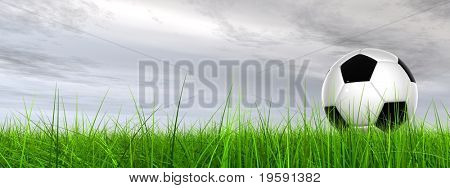 High resolution 3D soccer ball in green grass over a gray sky