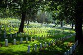 picture of arlington cemetery  - Arlington National Cemetery on Memorial Day 2006 - JPG