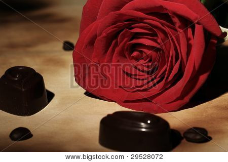Close up of red rose and chocolate candies