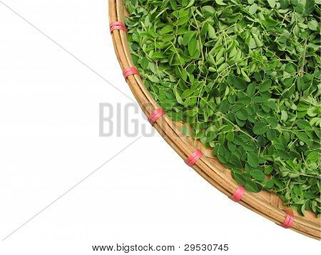 Horse radish leaf in the wicker basket
