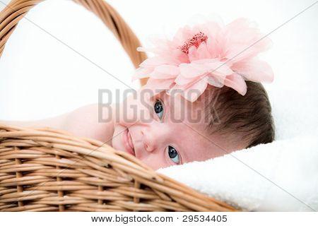 Portrait newborn baby in basket