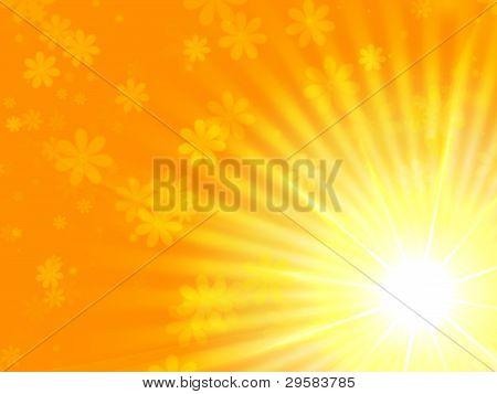 Sun Yellow Light With Flowers