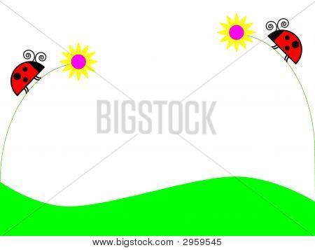 Ladybugs On Flowers