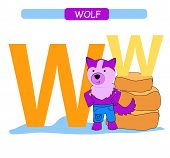 Letter W And Funny Cartoon Wolf. Animals Alphabet A-z. Cute Zoo Alphabet In Vector For Kids Learning poster