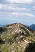 View To Volovec Mountain Peak On Slovakian-polish Borders From Placlive Mountain Peak On Rohace Moun poster
