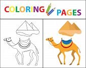 Coloring Book Page. Camel And Pyramid. Sketch Outline And Color Version. Coloring For Kids. Children poster