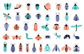 Vector Set Of Cute Cartoon Bugs Or Beetles, Butterflies. Isolated Elements, Clipart On White Backgro poster
