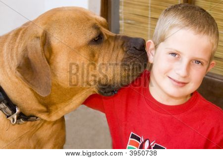 Boy With Boerboel