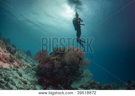 scuba santa and some coral