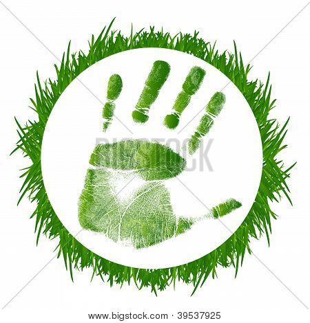 Grass And Handprint