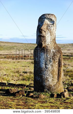 Standing Moai In Easter Island