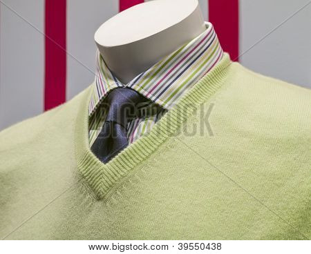 Green Sweater, Striped Shirt And Blue Tie (side View)