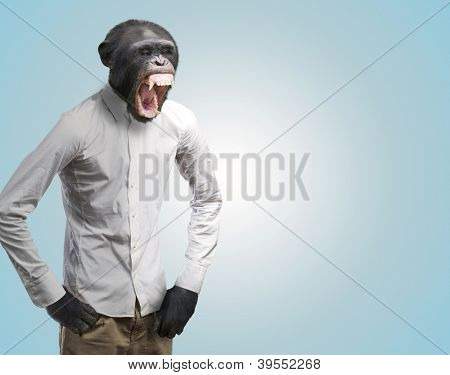 Annoyed Monkey Shouting On Turquoise Background