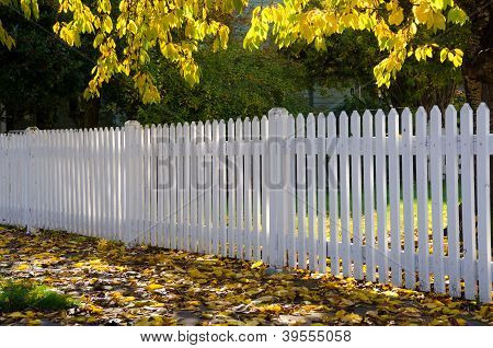 Neighborhood Fence
