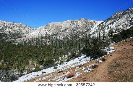Pinyon Ridge Trail
