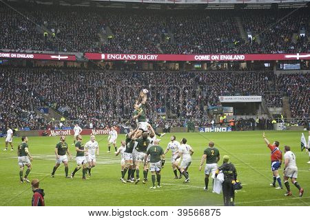 TWICKENHAM LONDON - NOVEMBER 23: South African Player Jumps for Ball at England vs South Africa, England playing in white lose 16-15, at QBE Rugby Match on November 23, 2012 in Twickenham, England