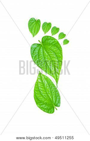 Green Carbon Foot Print Concept