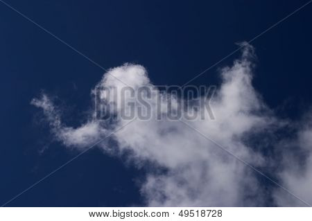 Ghost Cloud