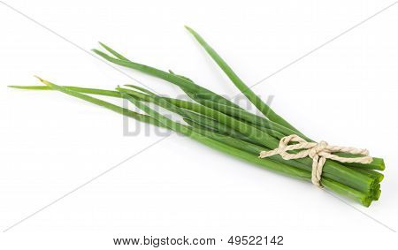 Fresh Green Onions Isolated On White Background