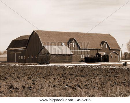 Old Sephia Barn