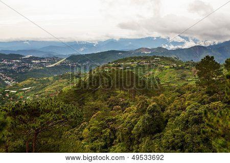 Baguio Mountain Landscape