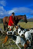 image of bloodhound  - Master of the fox hunt wearing traditional red coat and black hat rewards his hounds with food - JPG