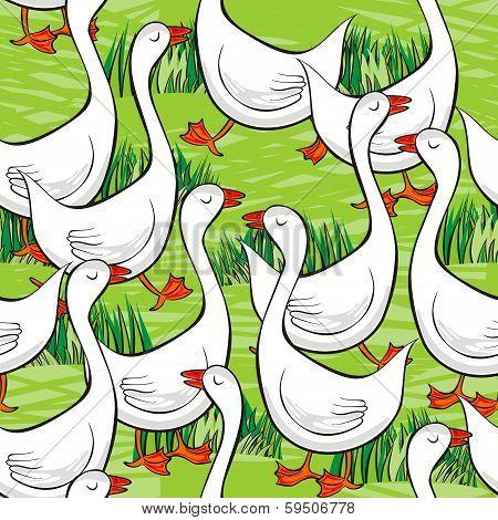 white gooses free run on sunny summer day animal farm life illustration on green