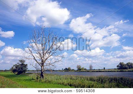 Oder River Brandenburg, Germany