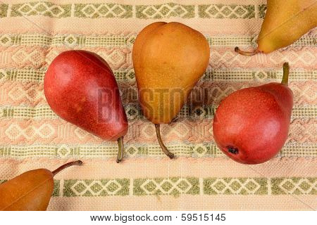 High angle closeup shot of a group of pears on a table cloth. Bosc and Red Pears are shown.