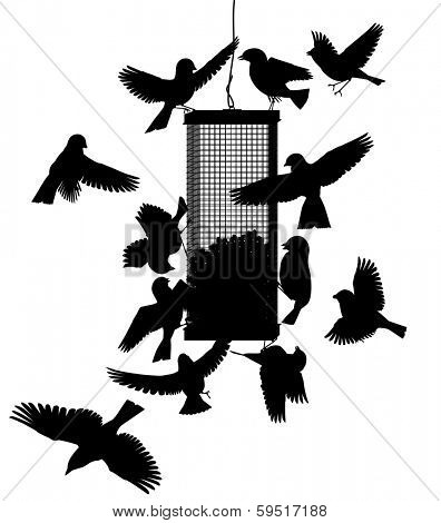 Illustrated silhouettes of birds at a hanging feeder