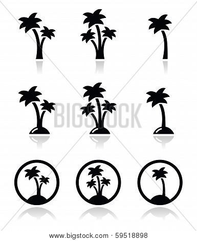 Palm trees, exotic holidays on beach vector icons set