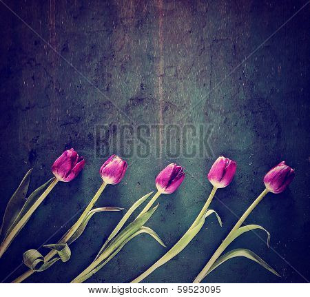 tulips on a wooden board. good for mother's day, easter, valentine's day or other holidays symbolizing love done with a retro vintage instagram filter