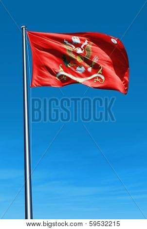141st Field Artillery Regimental colors waving on the wind