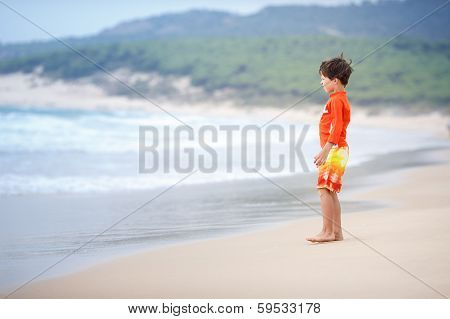 Six years old boy playing on exotic beach