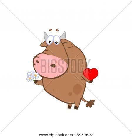 Bull love