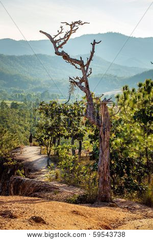 Narrow path oft the Pai canyon in Pai, Northern Thailand