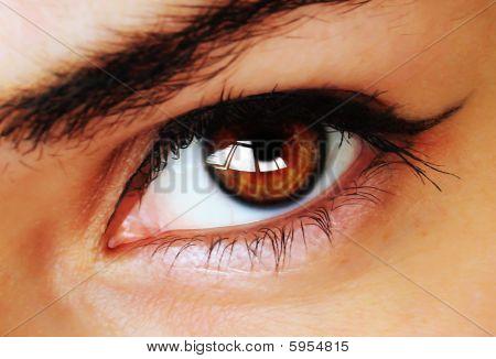 Brown Eye With Makeup