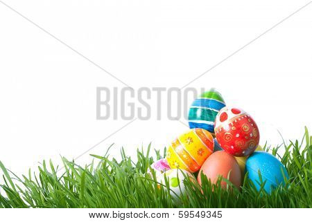 easter color eggs on green grass over white background