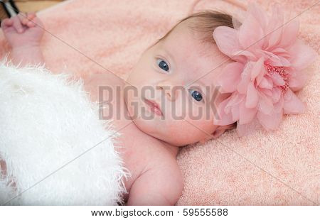 Close up portrait newborn baby