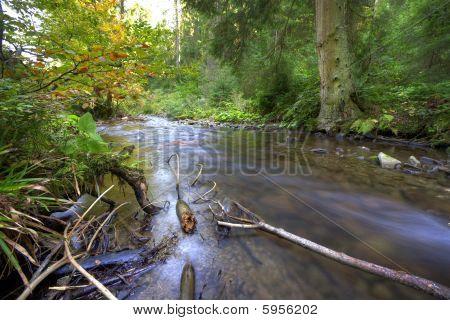 Mountainous River