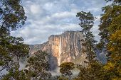stock photo of canaima  - Close - JPG